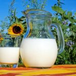 朝の健康対策にギーと牛乳は欠かせないって美味しい