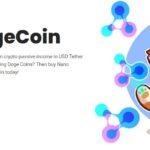 ナノドージ nanodoge :仮想通貨のおすすめ銘柄
